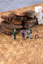 Miniature Creative Hiking Tourists Visit Traditional Chinese Medicine