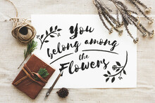 Aerial View Of You Belong Among The Flowers Phrase On White Paper With Flowers Decoration