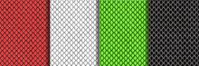 Snake Skin Abstract Seamless Patterns Set