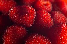 Closeup Of The Pile Of Ripe Raspberries.