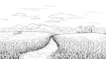 Hand Drawn Field Landscape. Corn Farm Sketch With Rural House And Silos. Pencil Drawing Of Agriculture Area Panorama. Truck With Maize Harvest. Vector Summer And Autumn Engraving Scene