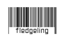 Digitalization Concept. Barcode Of Black Horizontal Lines With Inscription Fledgeling