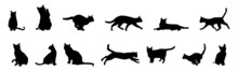 Cat Silhouette Collection