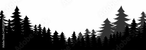 Fotografie, Obraz forest silhouette, pine tree silhouette