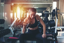 Woman Lifting Dumbbell Weight While Sitting At The Gym, Sports Training With Weight, Exercise Fitness And Healthy Lifestyle