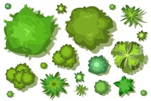 A Set Of Trees And Bushes. View From Above. Height. Plant Landscape. Green Wildlife. Top View. Illustration In Cartoon Style. Isolated Vector.