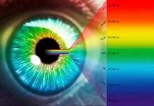 Artwork Of Human Eye And Optical Spectrum