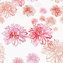 Pink Red Chrysanthemum Flower Vector Seamless Bright Pattern Multicolor