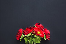Bouquet Of Red Buttercups Flowers On A Black Background. Artificial Flowers. Floral Layout, Template. Copy Space.