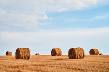 Straw Bales In Front Of Blue Sky Background