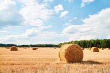 Harvesting Background