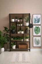 Stylish Room Interior With Many Beautiful Houseplants