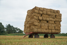 Flatbed Bale Wagon On The Field With Large Stack Of Small Square Wheat Straw Bales