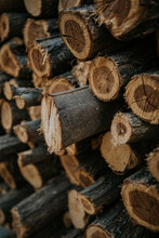 Background Of Stacked Dry Firewood Logs