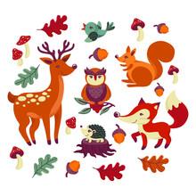 Autumn Animals. Fall October Season. Wild Forest Animals, Wildlife.  Autumn Woodland Children Design Background. Orange Nature. Baby Vector Illustration.