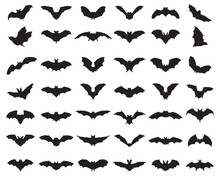 Black Silhouettes Of Bats On A White Background