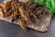 Crayfish Fresh Seafood Ready To Cook Raw Product Meal Snack On The Table Copy Space Food Background Rustic