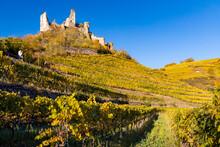 Ruins Of Senftenberg, Krems-Land District, Lower Austria, Austria