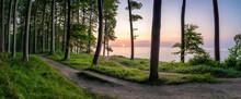 Jasmund National Park At Sunrise, Island Of Rügen, Mecklenburg-Vorpommern, Germany
