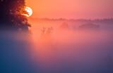 Fototapeta Na sufit - Letni Mglisty Wschód Słońca