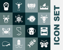 Set Butterfly, Dog Bone, Cow Head, Elephant, Turtle, Deer With Antlers, Paw Print And Puffer Fish Icon. Vector