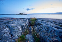 Evening In Rocky Shore