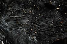 Textura De Madera Negra Quemada