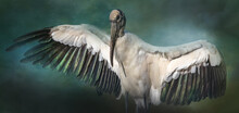 A Composite Image Of A Wood Stork With Its Wings Spread.  The Original Background Was Swapped With A Green Background That Highlights The Green Tint To The Wing Feathers.