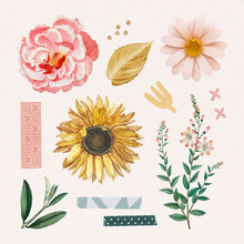 Rose And Sunflower Stickers Pack Vector