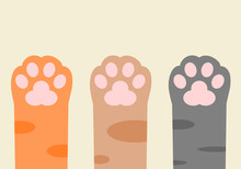 Three Cute Paws Up Cat Pet Orange Brown And Black Leg Cats Flat Vector Icon.