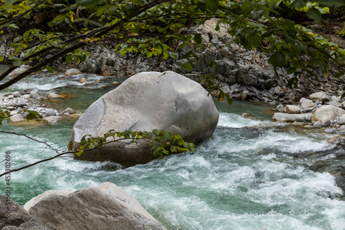 Rock detail in the stream surrounds by forest in the Swiss Alps