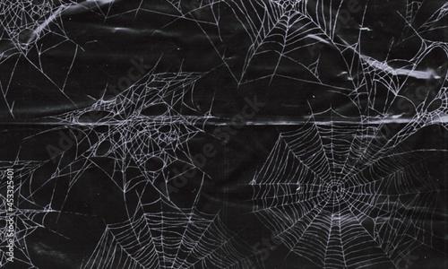 Canvas Print spider webs on black banner