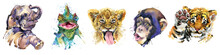 Watercolor Set Of Forest African Isolated Cute Baby Elephant, Tiger Cub, Lion, Monkey, Chameleon Lizard Animal. Woodland Illustration.