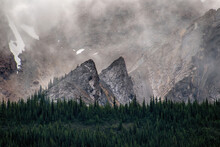 TWO HUGE ARROW SHAPED ROCK FORMATIONS POINT SKYWARD AT THE TREE LINE IN THE FOG - JASPER NP