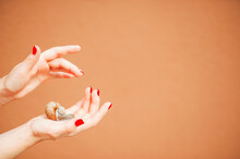 Female Hands And Snail Close-up And Copy Space On Terracotta Wall Background. Skincare Concept With Cosmetics Snail Mucin...