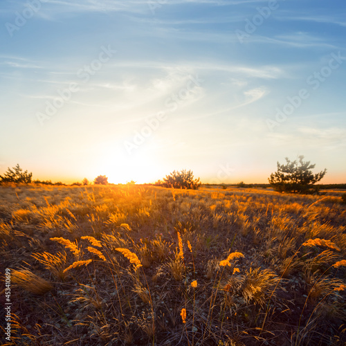sandy prairie at the sunset, evening desert scene