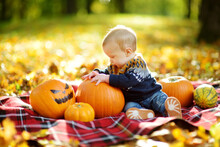 Cute Small Baby Boy Sitting Near Small Pumpkin With Painted Scary Face On Sunny Autumn Day. Kid Trick Or Treating On Halloween. Family Time At Thanksgiving And Halloween.