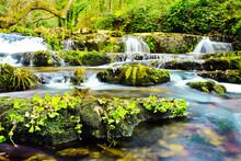 Beautiful Greenery Sight View Of Small Waterfall Big Stones Lake Covered With Moss Plants Jungle.jpg