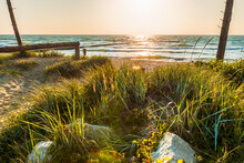 Descent To The Beaches Between Ornamental Grass And A Wooden Railing, Stone Boulders Among The Grasses In The Foreground, Wooden Breakwater In The Background, Baltic Sea Darłowo