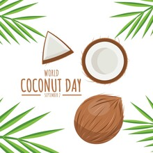 Vector Illustration, Coconut And Leaves Isolated On White Background, As A Banner, Poster Or Template, World Coconut Day.