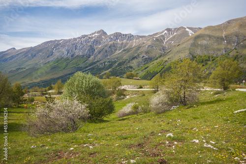 Obraz na plátně Panoramic view of Gran Sasso massif in the spring season