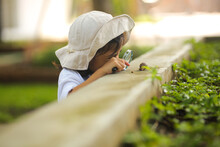 Little Kid Girl Asian Wearing A White Hat And Jeans Jumpsuit And Xploring Nature With A Magnifying Glass. Which Increases The Development And Enhances Outside The Classroom Learning Skills Concept.