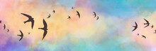 Black Bird Silhouettes On Sunset Sky Background, Birds Sketched In Black Outlines Flying In A Flock With Colorful Blue Yellow Pink And Purple Clouds In Beautiful Sunset Colors