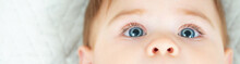 Close-up Portrait Of Baby Boy With Beautiful Blue Eyes And Long Eyelashes. Baby Eyes Detail Photo. Panorama, Banner