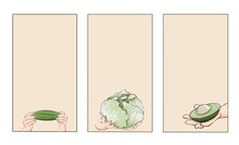 Template For Cards And Stories With Vegetables. Avocado, Cucumber, Cabbage. Hands Holding Food. Vegetarian Day. Gardening And Agriculture.