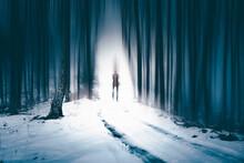 Man Walking Alone In Magical Dark, Foggy Forest.