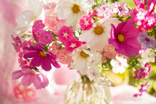 Floral Background, Postcard With A Fragment Of A Close-up Of A Bouquet And A Vase, Pink, White Purple Flowers Of Cosmos And Annual Phlox On A Green Pink Backdrop, Selective Focus, Blur.