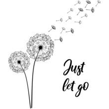 Dandelion; Just Let Go