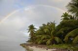 Tęcza i rajska plaża z palmami kokosowymi