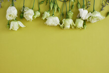 Lemon White And Green Roses On A Green Background, Postcard, Copy Space, Top View, Mock Up